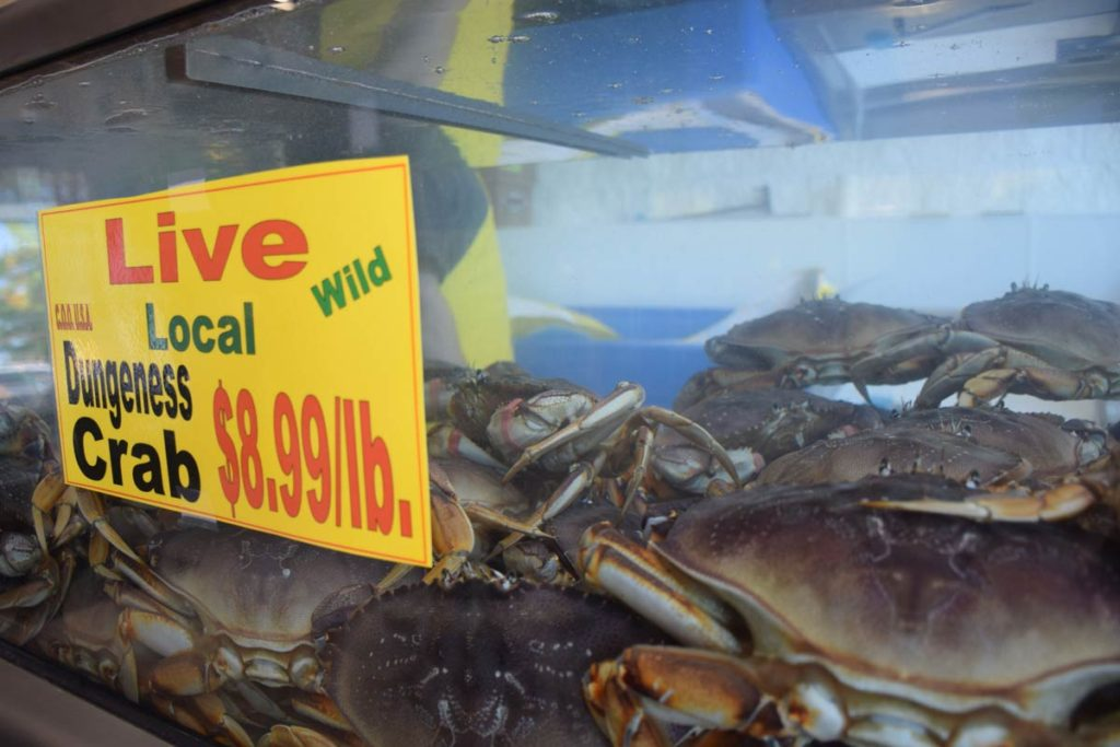 Dungeness Crab at Kuzma's Fish Market
