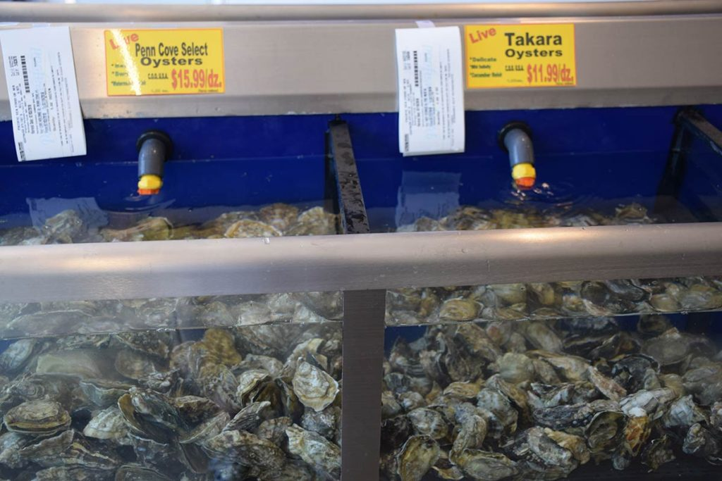 Penn Cove and Takoya Oysters at Kuzma's Fish Market